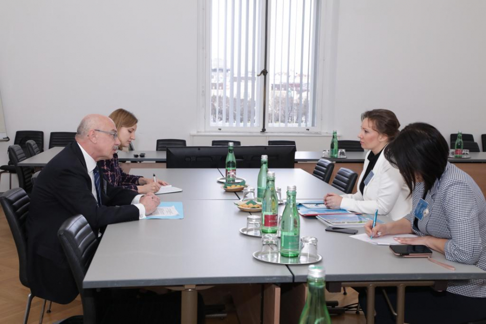 В Вене состоялась рабочая встреча Анны Кузнецовой  и заместителя  Генерального секретаря ООН Владимира Воронкова